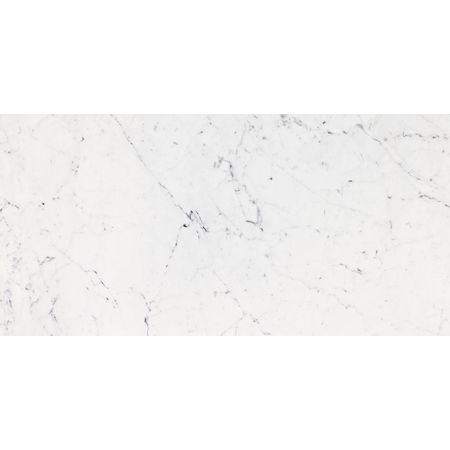 Bianco Pulido 58.6x118.7