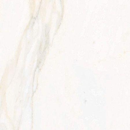 Calacata Gold 59.6x59.6