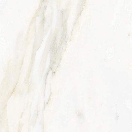 Calacata Gold 43.5x43.5