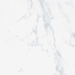 Carrara Blanco Brillo 43.5x43.5