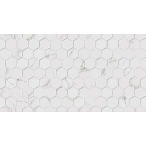 Forest Carrara Blanco 31.6x59.2