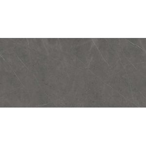 Xlight Premium Liem Grey Polished 120x250